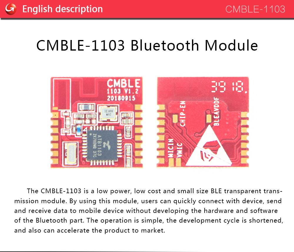 CMBLE-1103-21